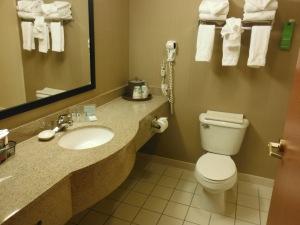 Plain Jane bathroom, but it did the trick