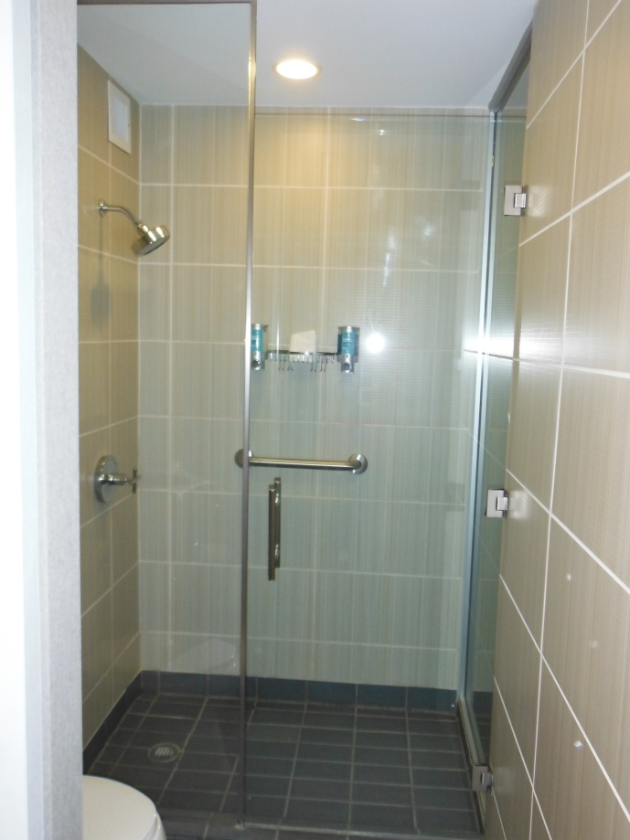 The batroom and shower