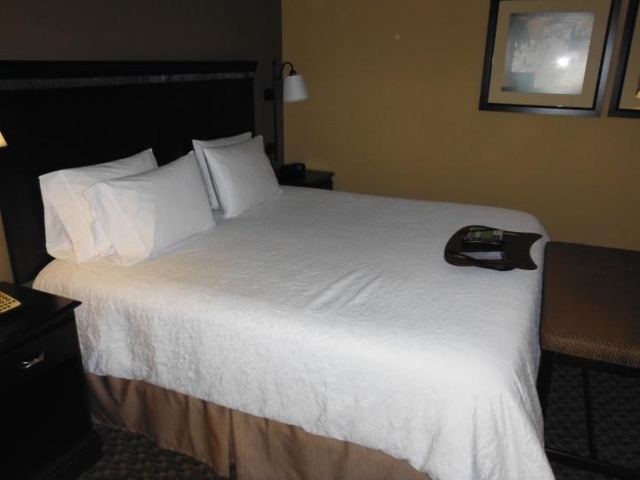 Hampton Inn Hotel Room