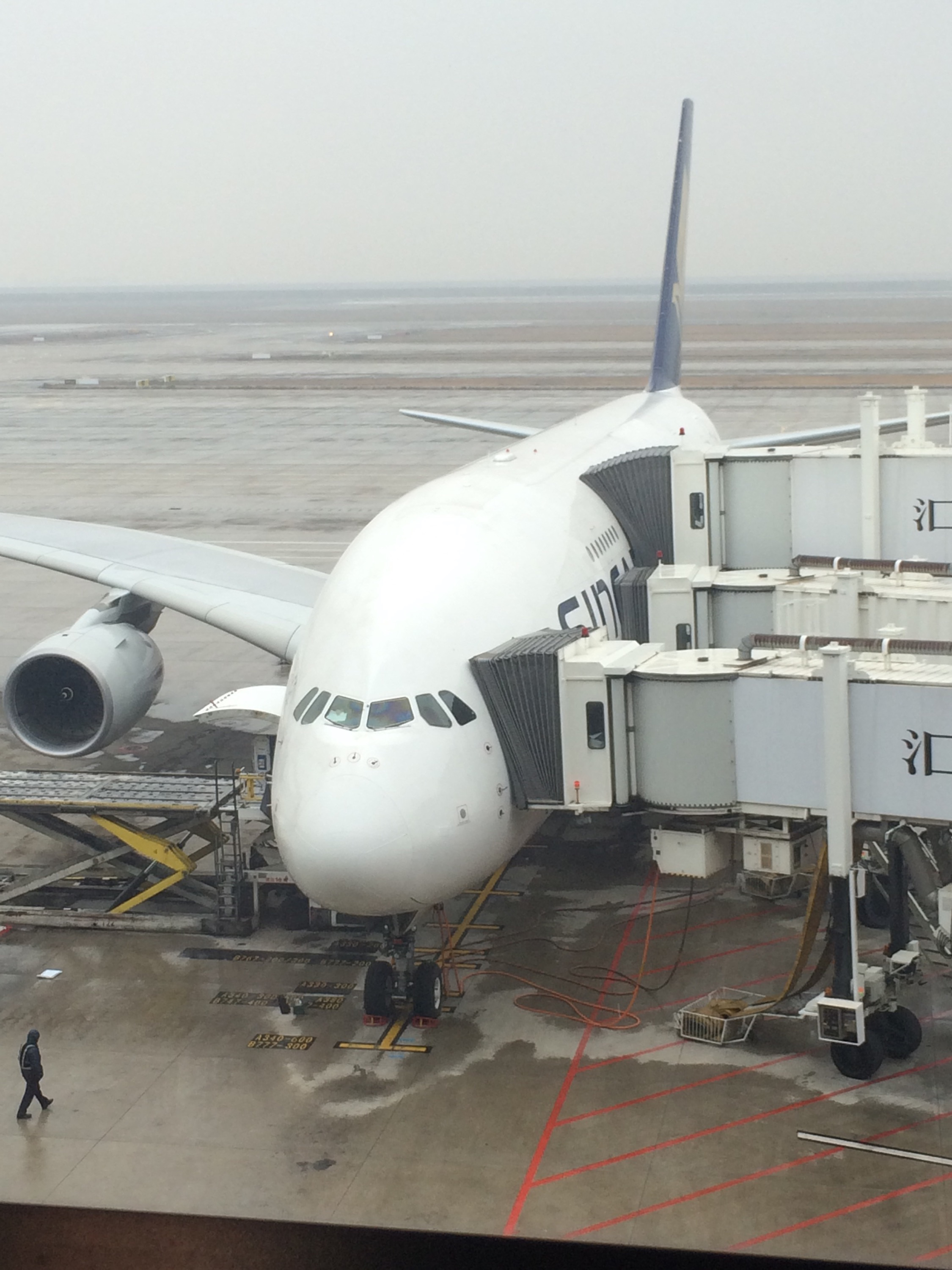 Review: Singapore Airlines business class, SQ288 Sydney-Canberra-Singapore